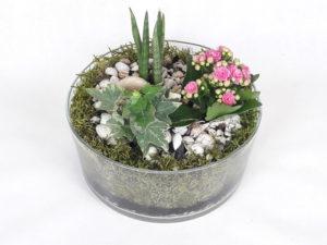 Mini ogródki